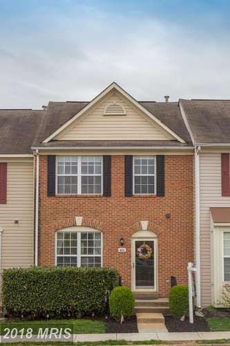 451 Silverbell Terrace NE, Leesburg, VA 20176 (#LO10221259) :: LoCoMusings