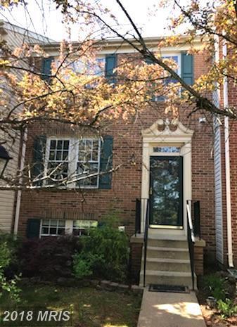 44945 Bourne Terrace, Ashburn, VA 20147 (#LO10231882) :: The Hagarty Real Estate Team