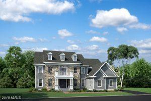 Linwood Manor Place, Ashburn, VA 20148 (#LO10233107) :: Labrador Real Estate Team