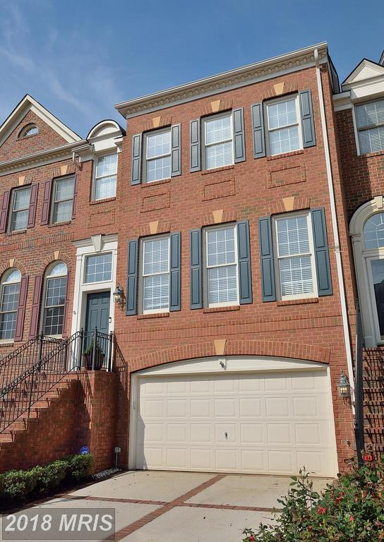 18533 Bear Creek Terrace, Leesburg, VA 20176 (#LO10244584) :: Labrador Real Estate Team