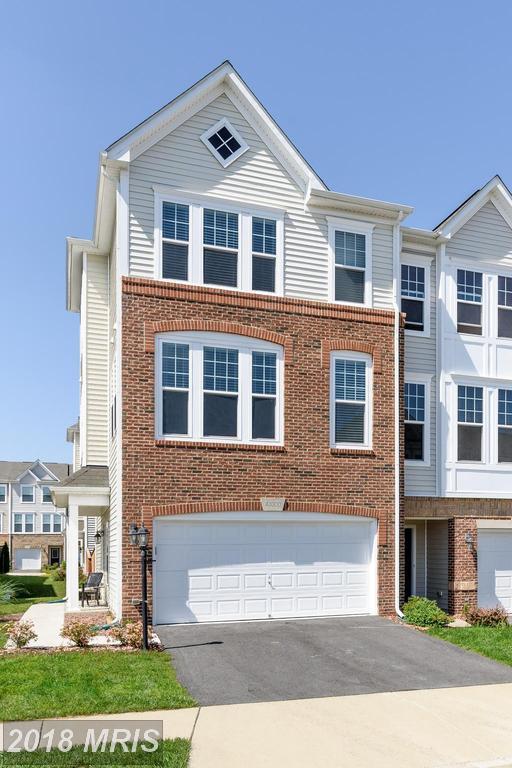 43300 Foyt Terrace, Ashburn, VA 20147 (#LO10251185) :: Labrador Real Estate Team