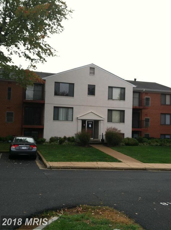 125-A Clubhouse Drive SW #6, Leesburg, VA 20175 (#LO10267543) :: The Greg Wells Team