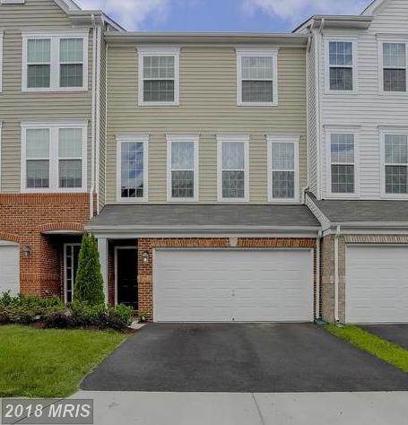 41854 Diabase Square, Aldie, VA 20105 (#LO10273630) :: The Greg Wells Team