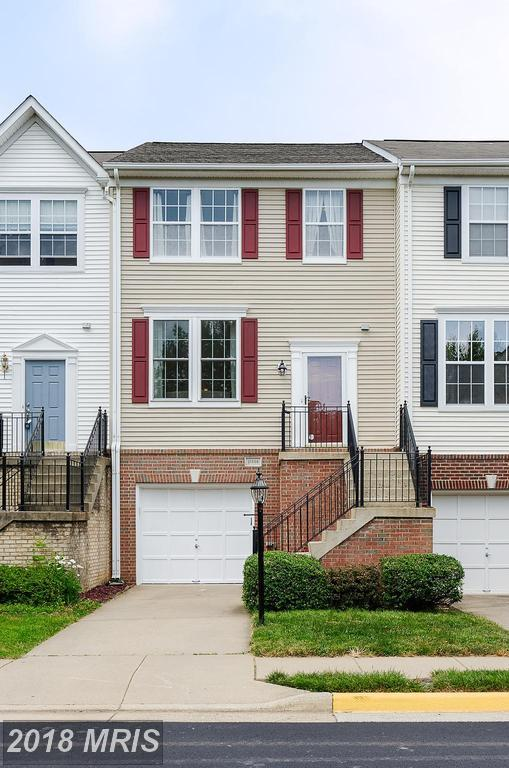 21566 Iredell Terrace, Broadlands, VA 20148 (#LO10277872) :: The Greg Wells Team