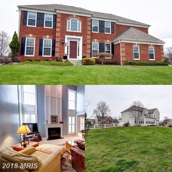 41324 Bethany Drive, Leesburg, VA 20175 (#LO10278500) :: Network Realty Group