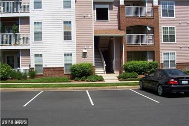 20950 Timber Ridge Terrace #203, Ashburn, VA 20147 (#LO10288213) :: Colgan Real Estate