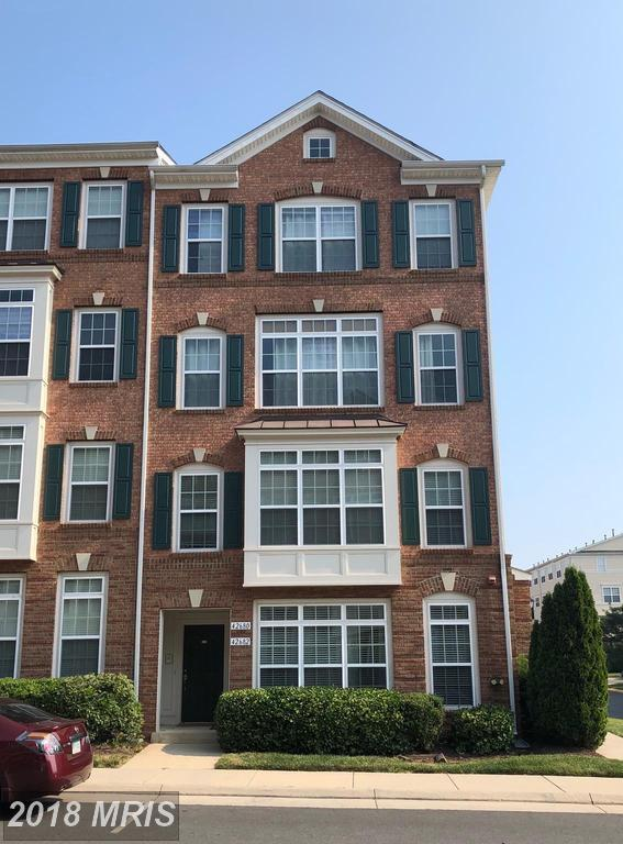 42680 Hollyhock Terrace, Ashburn, VA 20148 (#LO10289942) :: Colgan Real Estate