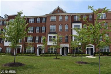 23490 Bluemont Chapel Terrace #1905, Ashburn, VA 20148 (#LO10297335) :: Pearson Smith Realty