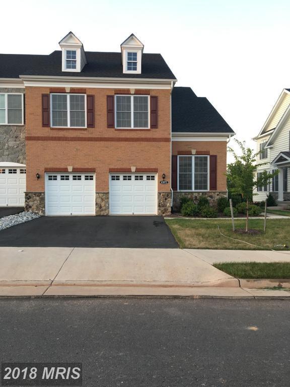 43172 Hattontown Woods Terrace, Ashburn, VA 20148 (#LO10298042) :: LoCoMusings