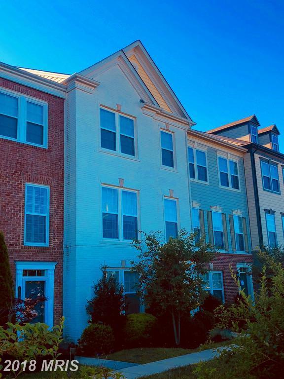 406 Wild Onion Terrace, Leesburg, VA 20175 (#LO10298723) :: Labrador Real Estate Team