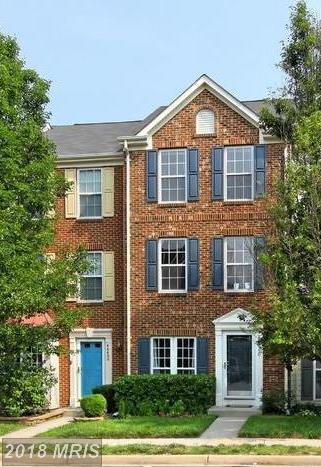 44490 Potter Terrace, Ashburn, VA 20147 (#LO10316824) :: RE/MAX Executives