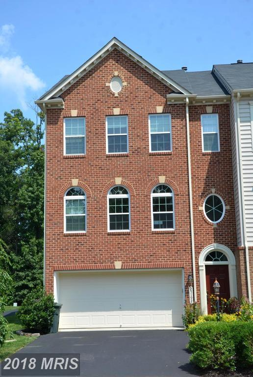 25192 Beach Place, Chantilly, VA 20152 (#LO10323614) :: RE/MAX Executives