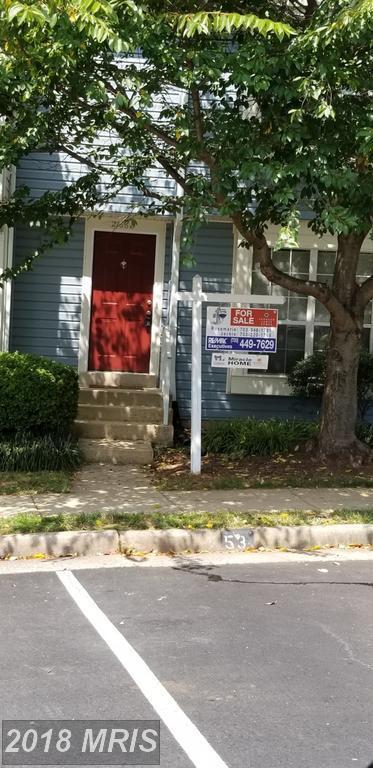 21668 Calamary Circle, Sterling, VA 20164 (#LO10324298) :: Great Falls Great Homes