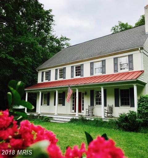 19323 Youngs Cliff Road, Sterling, VA 20165 (#LO10353295) :: Pearson Smith Realty