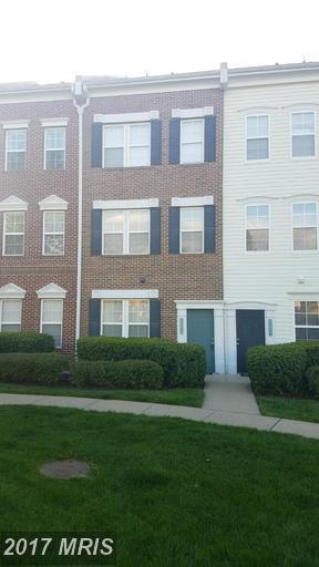22575 Blue Elder Terrace, Ashburn, VA 20148 (#LO9924459) :: Pearson Smith Realty