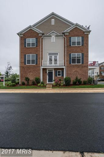 43597 Taylor Tree Terrace, Chantilly, VA 20152 (#LO9951480) :: LoCoMusings