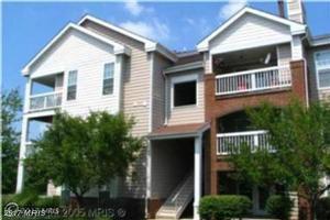 21019 Timber Ridge Terrace #103, Ashburn, VA 20147 (#LO9979069) :: LoCoMusings