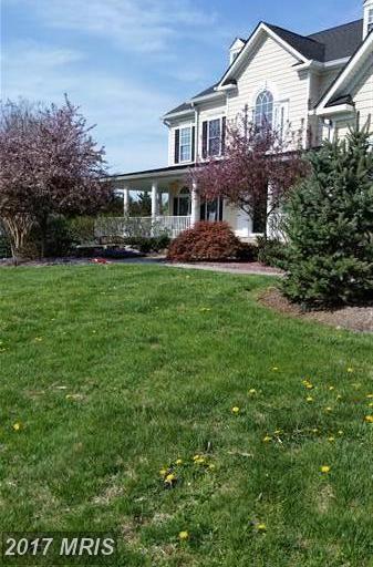 17541 Francis Farm Place, Hamilton, VA 20158 (#LO9983369) :: LoCoMusings