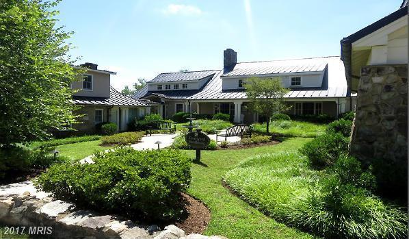 10 Pendleton Street, Middleburg, VA 20117 (#LO9997004) :: Pearson Smith Realty
