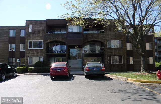 408 Girard Street #48, Gaithersburg, MD 20877 (#MC10003652) :: LoCoMusings