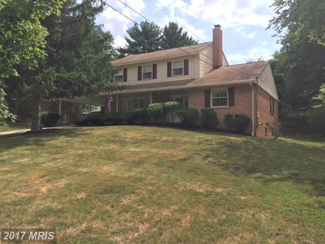 12521 Palermo Drive, Silver Spring, MD 20904 (#MC10017997) :: Pearson Smith Realty
