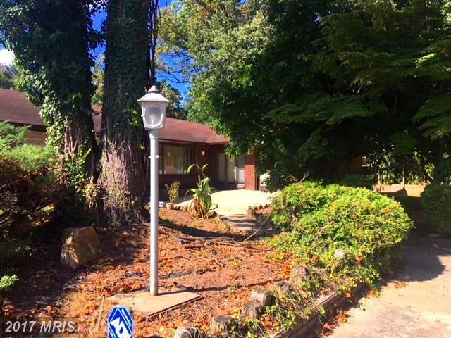 602 E Randolph Road, Silver Spring, MD 20904 (#MC10077712) :: Pearson Smith Realty
