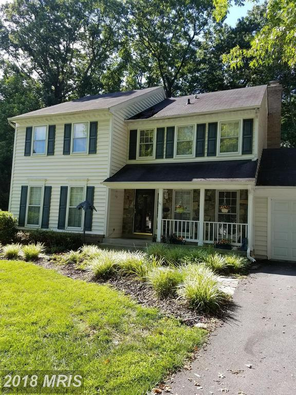 19901 Silverfield Drive, Montgomery Village, MD 20886 (#MC10155928) :: The Gus Anthony Team