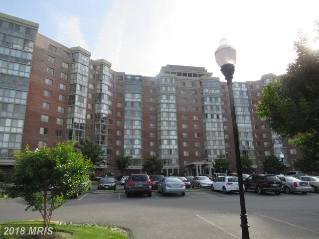 3100 Leisure World Boulevard #1010, Silver Spring, MD 20906 (#MC10274609) :: Pearson Smith Realty