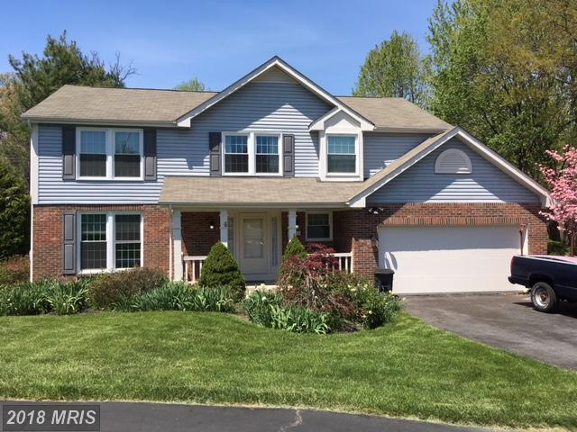11012 Colonial Green Court, Gaithersburg, MD 20878 (#MC10278544) :: Dart Homes