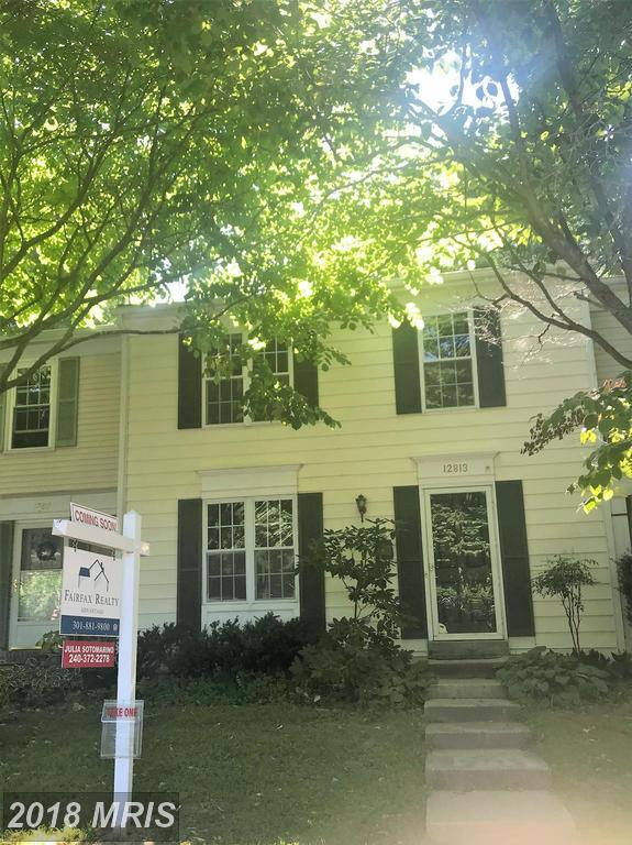 12813 Kitchen House Way, Germantown, MD 20874 (#MC10302584) :: The Sebeck Team of RE/MAX Preferred