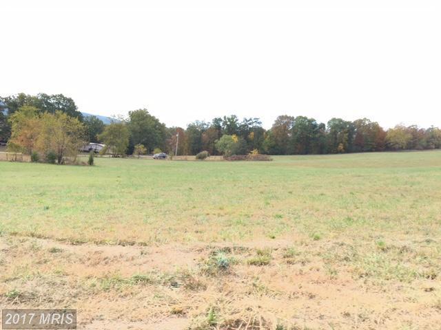 See View Drive, Burlington, WV 26710 (#MI10078318) :: Pearson Smith Realty