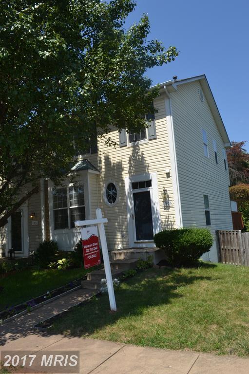 9336 China Grove Court, Manassas, VA 20110 (#MN10038373) :: Pearson Smith Realty