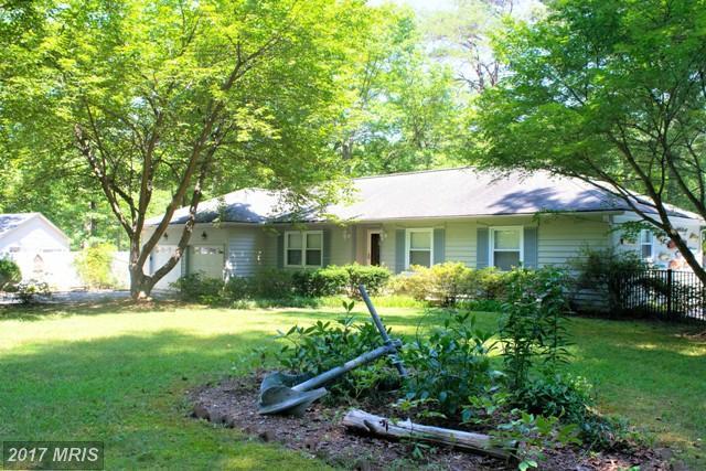 397 Mill Creek View Lane, Callao, VA 22435 (#NV10070765) :: LoCoMusings