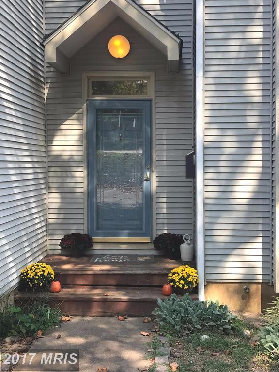 317 Harper Drive, Orange, VA 22960 (#OR10071754) :: LoCoMusings