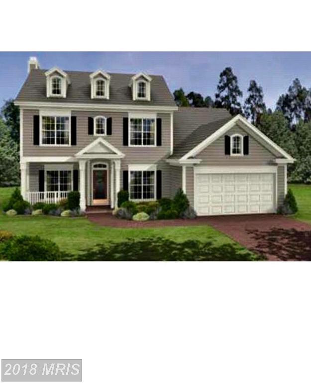 105 Monroe Street, Locust Grove, VA 22508 (MLS #OR10302394) :: Explore Realty Group