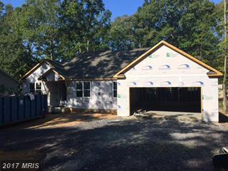 4205 Lakeview Parkway, Locust Grove, VA 22508 (#OR9869977) :: Pearson Smith Realty