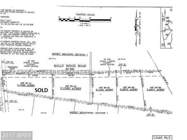 LOT Holly Ridge Road, Unionville, VA 22567 (#OR9905969) :: Pearson Smith Realty