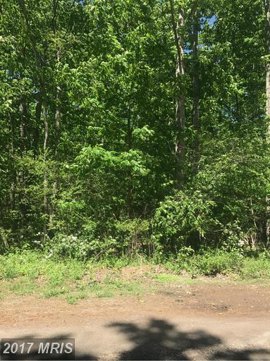 Boling Lane, Rhoadesville, VA 22542 (#OR9941220) :: Green Tree Realty