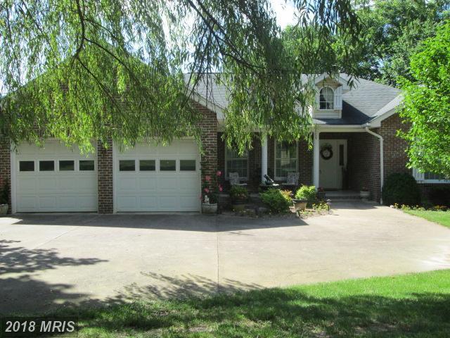 97 Murchinson Lane, Luray, VA 22835 (#PA10273445) :: The Gus Anthony Team