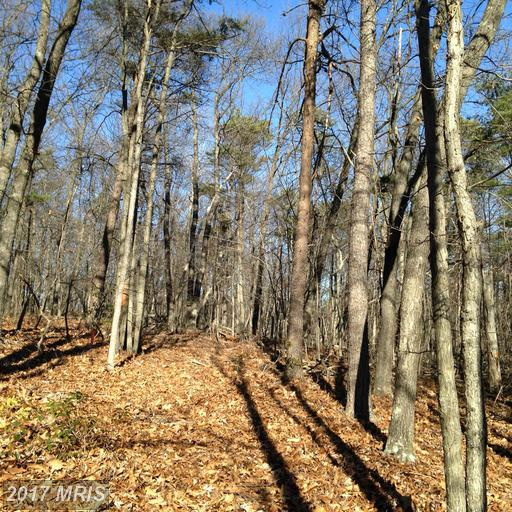 Panorama View, Stanley, VA 22851 (#PA9886145) :: Pearson Smith Realty