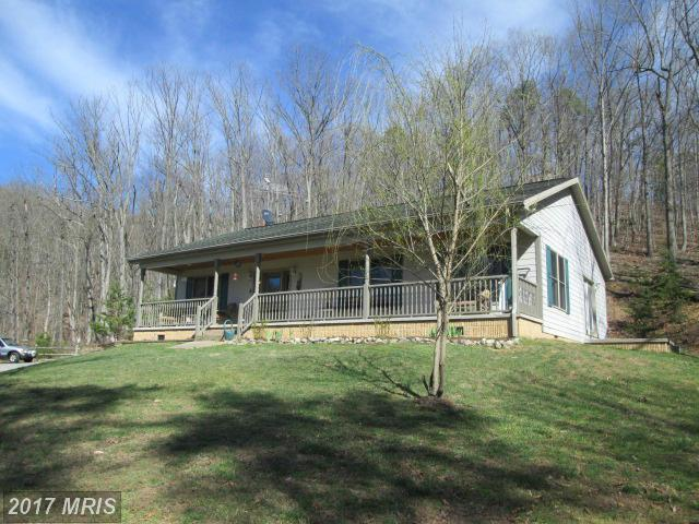 358 Piney Knoll Place, Shenandoah, VA 22849 (#PA9912029) :: Pearson Smith Realty