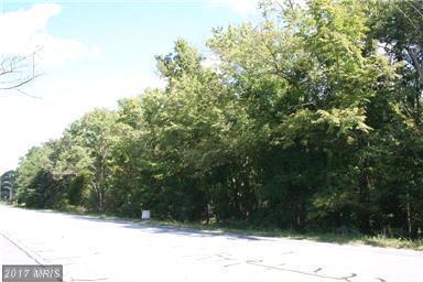 0 Frank Tippett Road, Cheltenham, MD 20623 (#PG10047931) :: Pearson Smith Realty