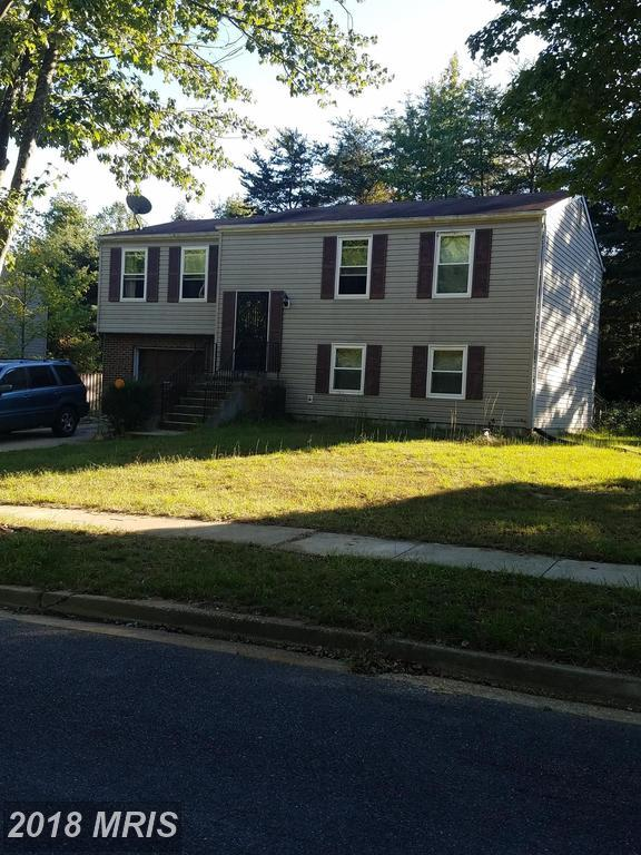 3811 Valley Wood Court, Fort Washington, MD 20744 (#PG10133797) :: Pearson Smith Realty