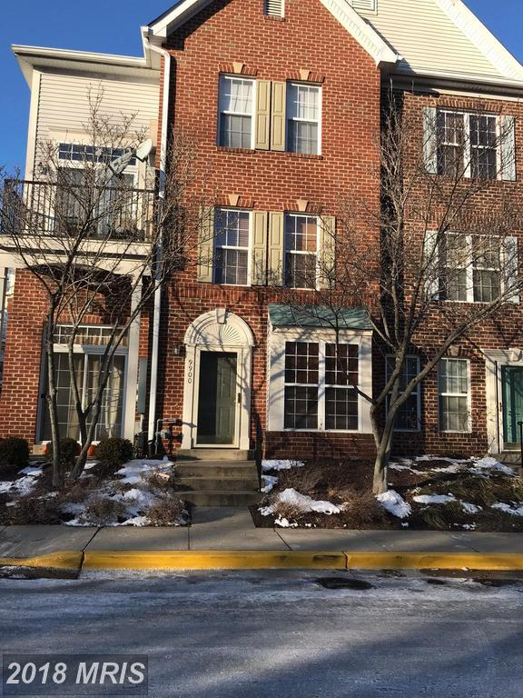 9900 Spanish Oak Way #81, Bowie, MD 20721 (#PG10136630) :: Pearson Smith Realty