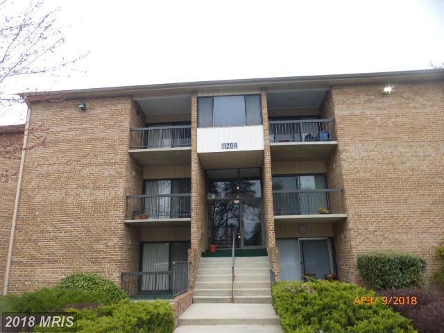 11204 Cherry Hill Road T-3, Beltsville, MD 20705 (#PG10210458) :: Dart Homes