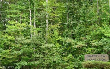 5901 Yates Ford Road, Manassas, VA 20111 (#PW10015045) :: Arlington Realty, Inc.