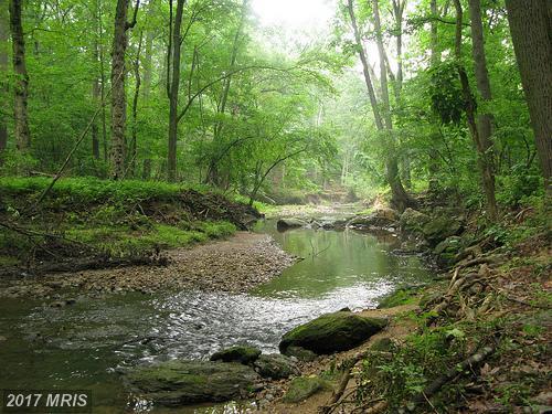 7381 Kurt Kahn Trail, Manassas, VA 20112 (#PW10061768) :: LoCoMusings