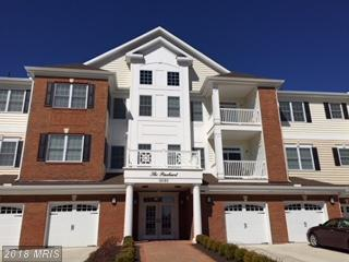 15120 Heather Mill Lane #203, Haymarket, VA 20169 (#PW10182603) :: Colgan Real Estate