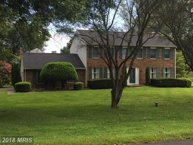 14182 Wyngate Drive, Gainesville, VA 20155 (#PW10336179) :: Advance Realty Bel Air, Inc
