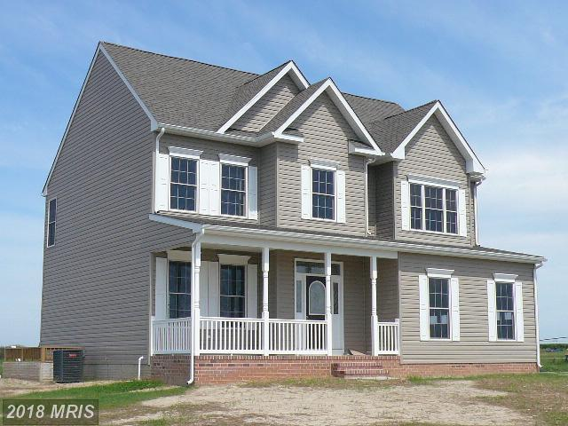 426 Chesterfield Avenue, Centreville, MD 21617 (#QA10206446) :: The Bob & Ronna Group